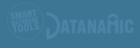 alternative logo datanamic